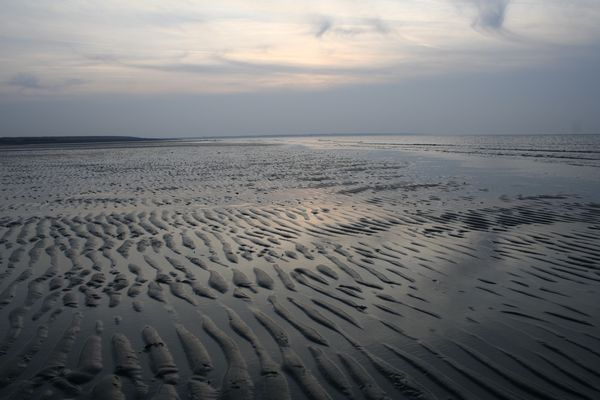 The tides left wave-shaped forms in the sand of the beach (Zeeland - Netherlands)