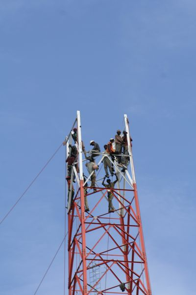 Congolese labourers building a mobile phone mast