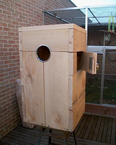 nest box macaw