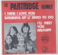 Partridge family - I Think I Love You