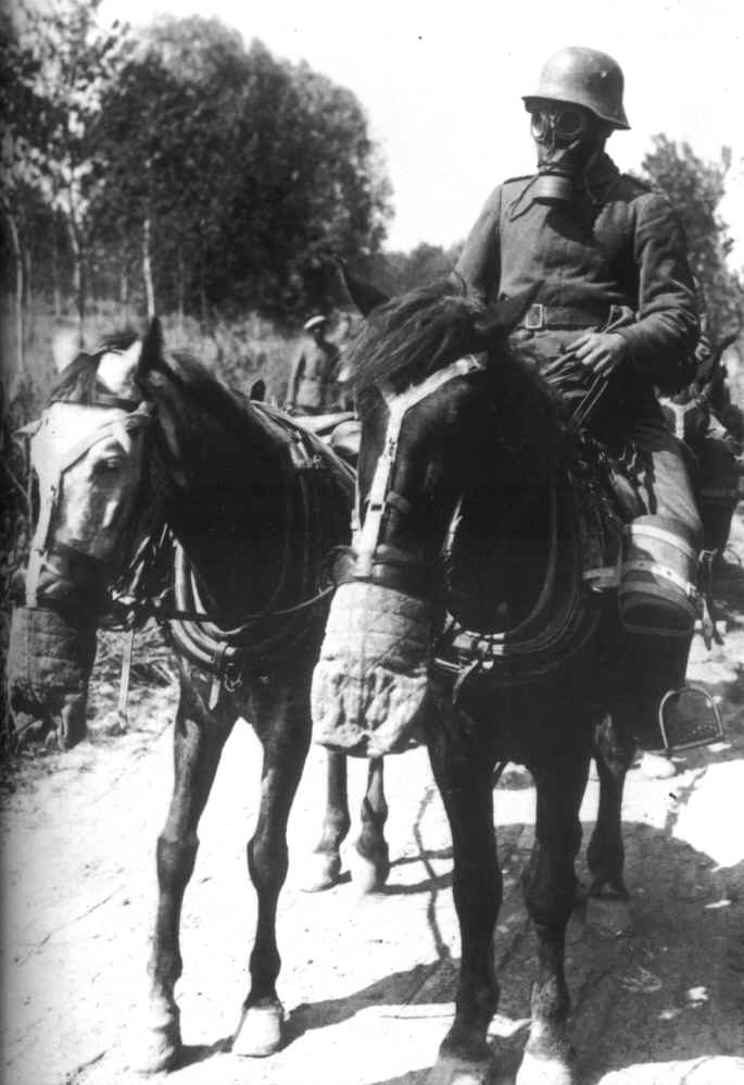 looking for pictures from horses with gasmasks in ww1